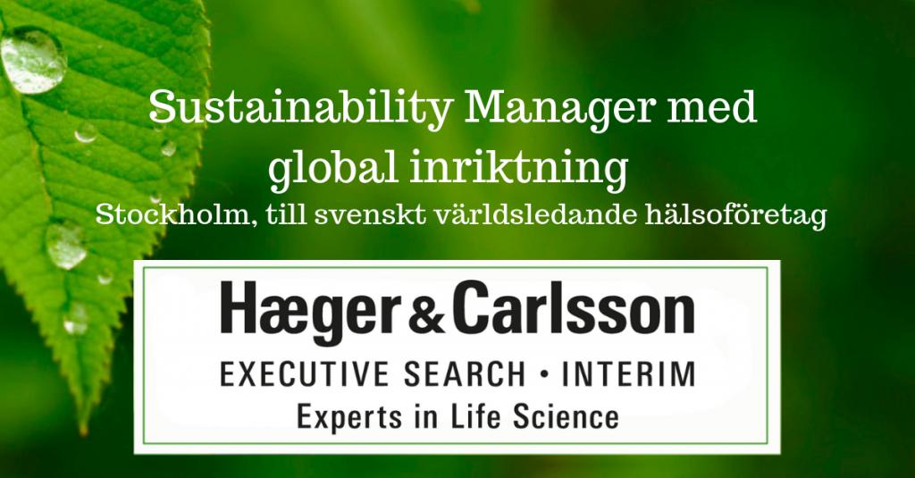 Sustainability Manager med global inriktning